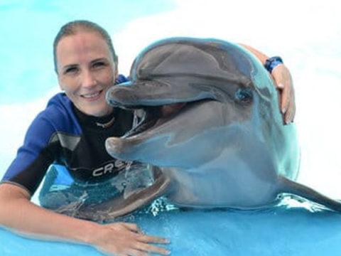 Плавание с дельфинами в Шарм-Эль-Шейхе